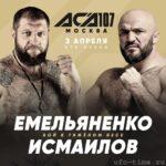 Бой Александра Емельяненко